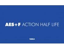 AES+F ACTION HALF LIFE: (2003-2005) (katalog razstave)